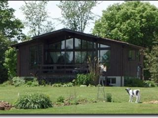 2 level winteried cottage on 50 acres with river - Chatsworth vacation rentals