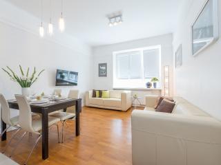 Spacious city center apartment Dmochowskiego 2 BR - Warsaw vacation rentals