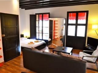 Estudio in Palma de Mallorca 102352 - Palma de Mallorca vacation rentals
