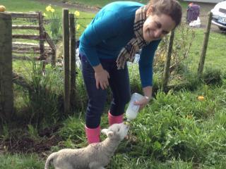 Maungakawa Views New Zealand Farmstays - Matamata vacation rentals