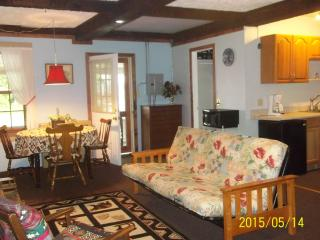 Beautiful 1 bedroom Speculator Condo with Internet Access - Speculator vacation rentals