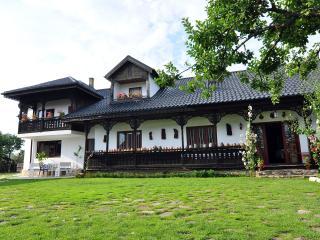 Bed&Breakfast Popamuseum Tarpesti - Targu Neamt vacation rentals