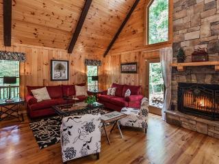 Treetop Splendor - Paradise in the Mountains - Ellijay vacation rentals