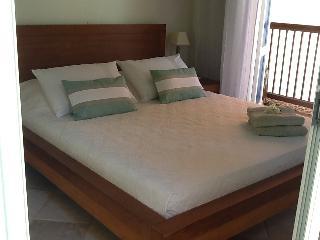 Nice 3 bedroom Villa in Marigot - Marigot vacation rentals