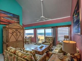 Serenity Breeze -Beachfront  Newly Remodeled! - Christiansted vacation rentals