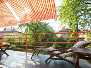 3 BD green oasis 5 min walk from the main square - Zagreb vacation rentals
