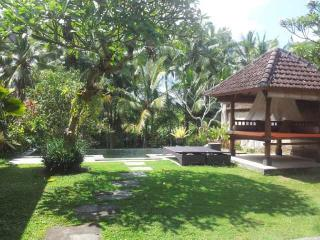 One Bed Room Pool Villa Rental Ubud Nice View - Ubud vacation rentals