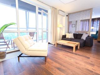 Boutique one bedroom apartment  in Vilnius center - Vilnius vacation rentals