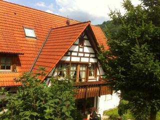Ferienapp. Sasbachwalden (max. 3 Pers.) - Sasbachwalden vacation rentals