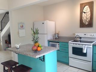 Georgous Renovated Town Home with Private Roof Top - Playas del Coco vacation rentals