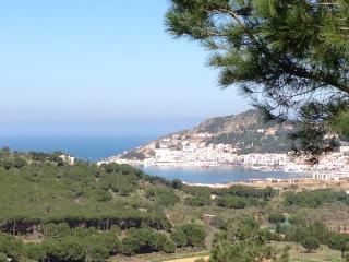 Nice Villa with Internet Access and Wireless Internet - El Port de la Selva vacation rentals