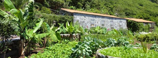Azores Island Rentals at Vistalinda Plantation - São Jorge vacation rentals