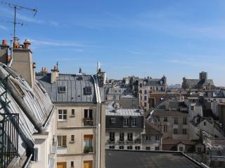 Les Toits de NOTRE-DAME ! Newly Renovated Studio ! - Paris vacation rentals