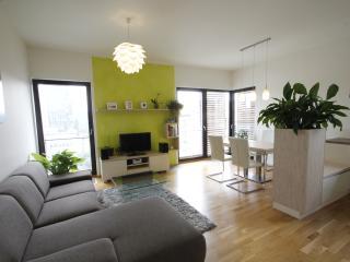 Modern Apt with Garage & View - Prague vacation rentals