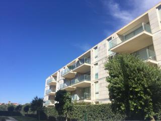Apartment in Vila do Conde, Porto area - Vila do Conde vacation rentals