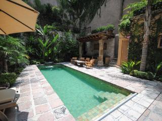 Comfortable 5 bedroom House in San Miguel de Allende - San Miguel de Allende vacation rentals