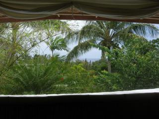 Bamboo Bungalow with Loft bedroom ocean view - Pahoa vacation rentals
