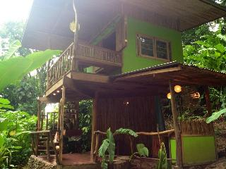 Photosynthesis Jungle Bungalows - Cocles vacation rentals
