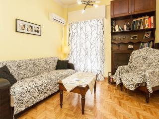 Entire Cozy Ap. Athens Piraeus - Athens vacation rentals