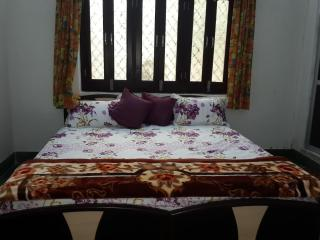SINGHI VILLA GUEST HOUSE - Udaipur vacation rentals