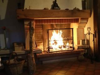 2,5 pces près du la cité médiévale - Saint-Ursanne vacation rentals