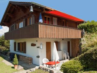 Chalet Tannegg (EG) direkt an Skipiste - Reichenbach vacation rentals