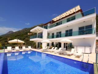 Villa Montana: 7 bedrooms, luxury, fabulous views! - Kalkan vacation rentals