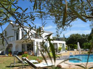 Villa Val d'Or Apartment with a Pool, Fireplace, a - Cotignac vacation rentals