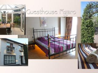 Cozy 2 bedroom House in Maastricht - Maastricht vacation rentals