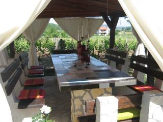 "Cottage ""Guda"" near waterfalls Krka - Drnis vacation rentals"