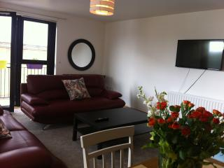 Clipper Quay - Derry vacation rentals