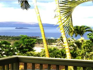 OCEAN VIEW PRIVATE ROMANTIC COTTAGE ABOVE WAILEA - Wailea vacation rentals