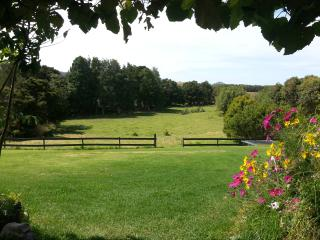 Organic Dairy Farm Bed and Breakfast - Mangawhai vacation rentals