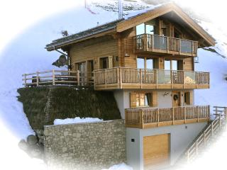Luxurious Contemporary Ski In Ski Out in 4 Vallées - Les Collons vacation rentals