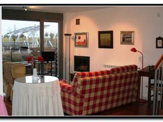 Apt. with garden,fireplace Lat - Latas vacation rentals