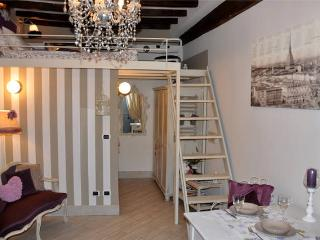 HISTORIC PEDESTRIAN CENTRE - FREE Wi-Fi - Turin vacation rentals