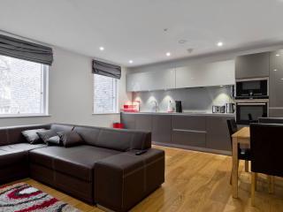 ★HUGE MODERN FLAT CENTRAL LONDON★ - London vacation rentals