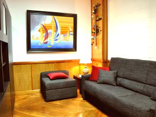 [87] Lovely studio flat with wifi in city centre - Seville vacation rentals