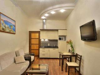 VIP-apartment jacuzzi, boiler, 2 LED TV in center - Kiev vacation rentals