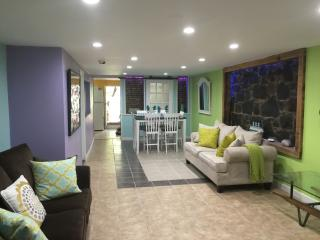 FOXY UNDERGROUND APARTMENT NEAR TIMES SQUARE - Union City vacation rentals