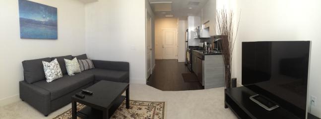 North SJ 2bd Apt near Levi Stadium - San Jose vacation rentals
