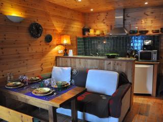 Maison LE BIDULE - Appartement LE BALCON-35m² - Serre-Chevalier vacation rentals