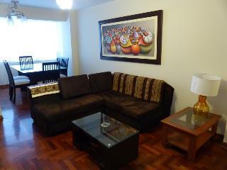 Confortable y acogedor departamento de 3 dormitori - Lima vacation rentals