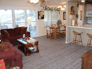 2 Bedroom 2 Bath Private Deck Units - 1203 - Indian Point vacation rentals