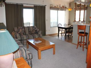 2 Bedroom 2 Bath Private Deck Units - 806 - Indian Point vacation rentals