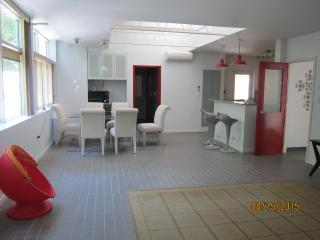 perfect getaway APT for couples @ Gold Coast of LI - Mill Neck vacation rentals
