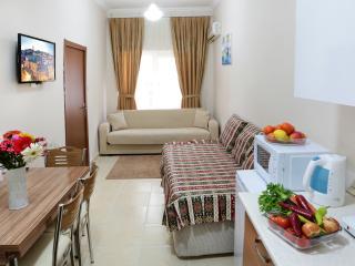 Sultanahmet- Great Villa Next 2d Park - Istanbul vacation rentals