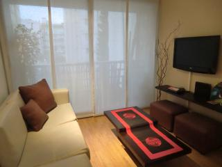 Palermo, Ancon Place 4 pax - Buenos Aires vacation rentals
