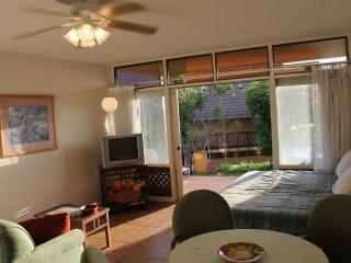 Ocean View Studio- West Molokai Resort #!226 - Maunaloa vacation rentals