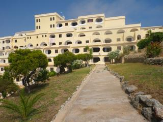 Nice Condo with Deck and Garden - Carvoeiro vacation rentals